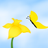 Daffodil &amp; Butterfly. Copyright 2013 Leah Jones