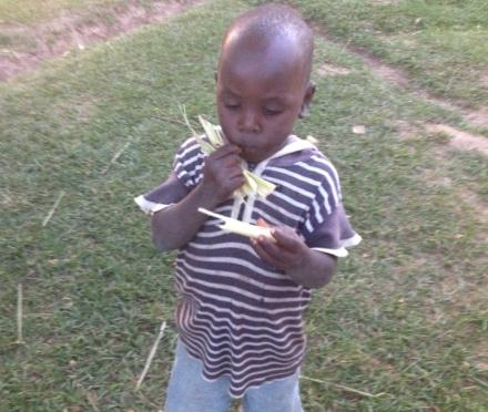 Boy eating sugar cane, Kenya, Africa